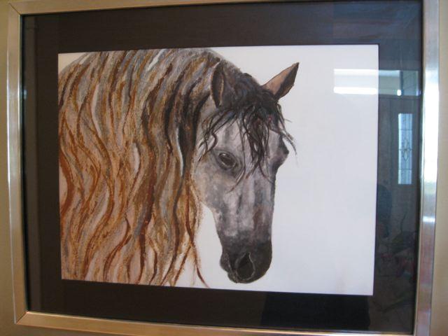 aghra-horse