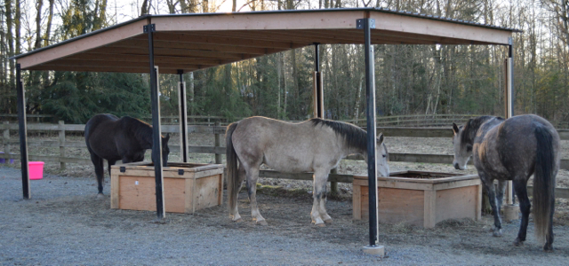Best Horse Shelter : Portable shelters for horses listen to your horse