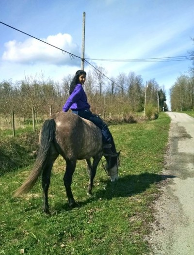 zorra-grass-riding