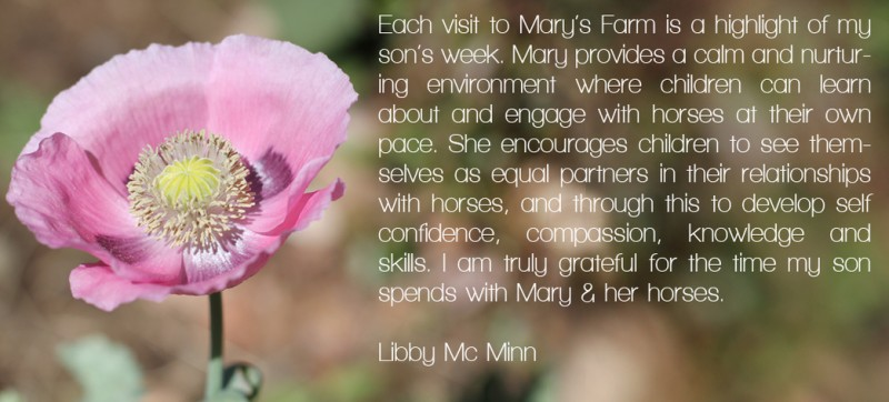 mary-farm