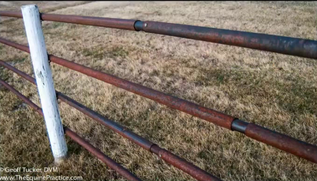 Fencing Pros And Cons Amp The Best Horse Fence Listen To