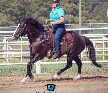 Crazy Cranky Lady Horsemanship