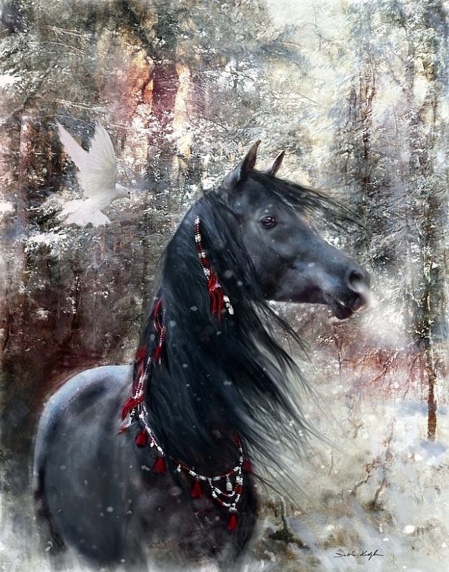 Custom digital art horse portrait - Dorota Kudyba