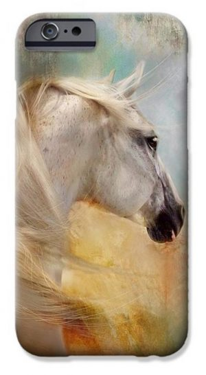 iPhone Case - Dorota Kudyba