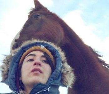 Rewilding the Herd – Being Here